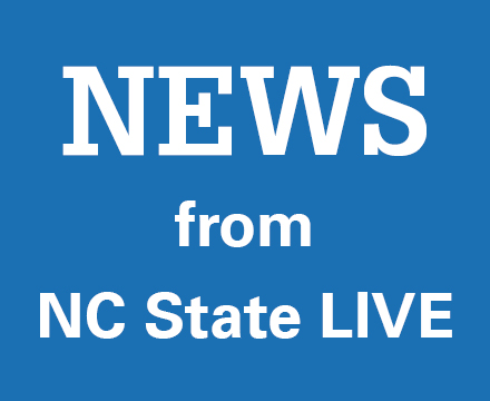 NCSL home page block_news